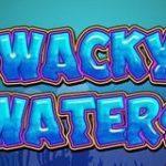 wacky waters logo